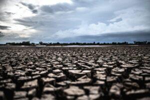 spękana ziemia w trakcie suszy